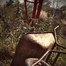 wheelbarrow abandoned rusty vintage