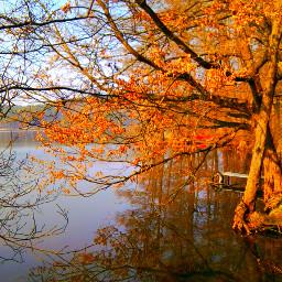 brandenburg color nature spring
