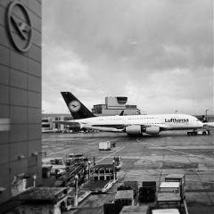 airport frankfurt lufthansa photography