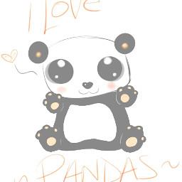 panda pets & animals love emotions drawing