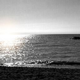 color splash freetoedit nature beach black & white