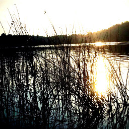 sunset lake vaction