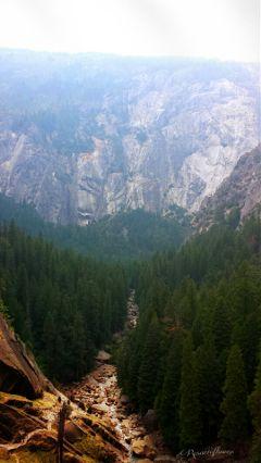 fog travel nature byebyesummer photography