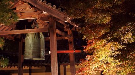 fall freetoedit photography kyoto travel