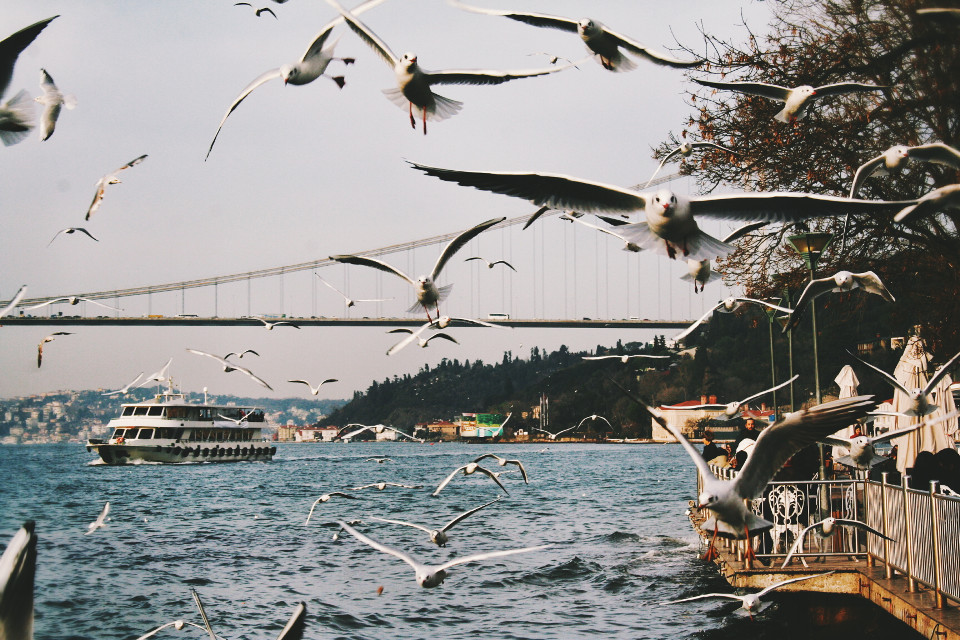 #photography #nature #colorful #vintage Beautiful Istanbul!