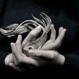 fish people nature hands blackandwhite